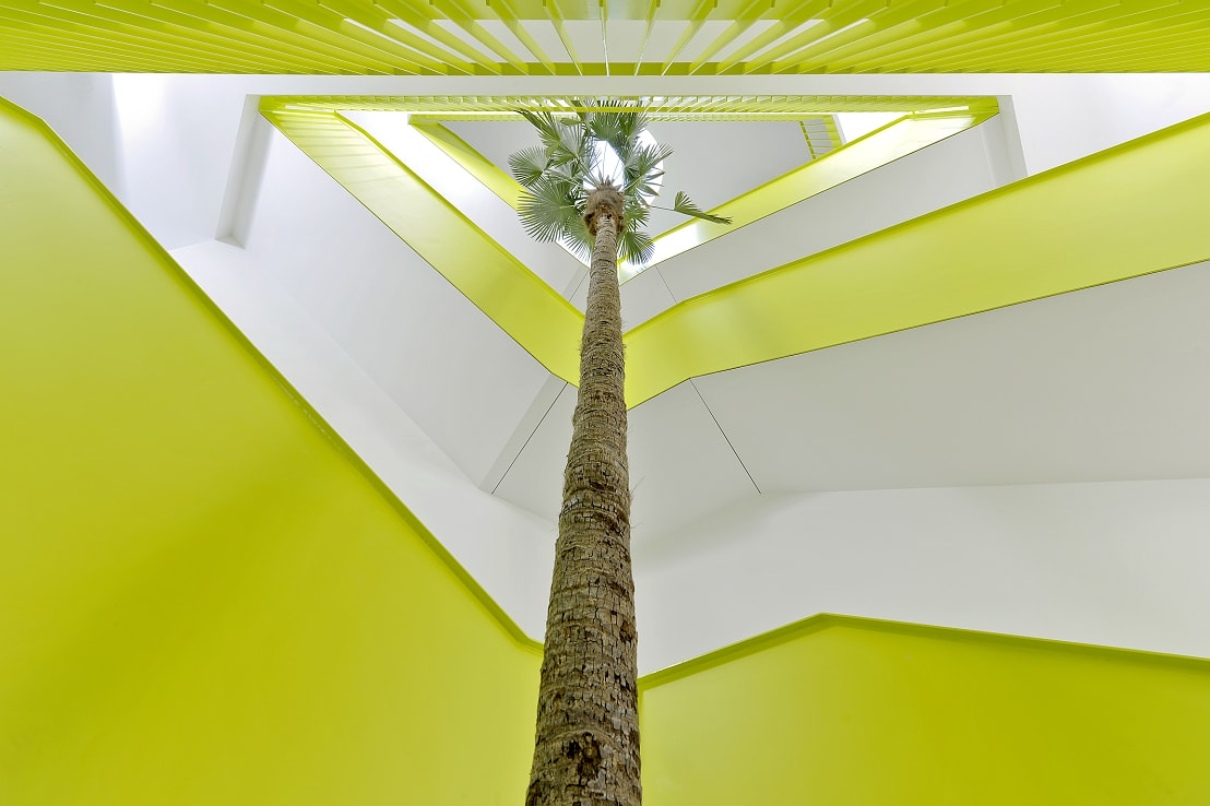 Big tropical palm interior lobby and stairway - Norway, Finland, Sweden, Denmark - Europe buy online