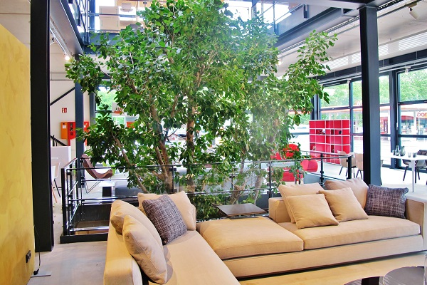Big tropical tree interior furniture house and shopping Center - Norway, Finland, Sweden, Denmark - Europe buy online