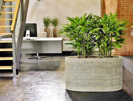 Room divider with plants can be reached with many possibilities.