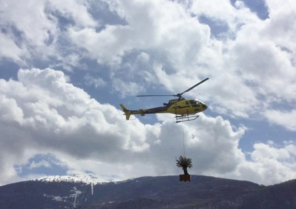 helicopter planting greening