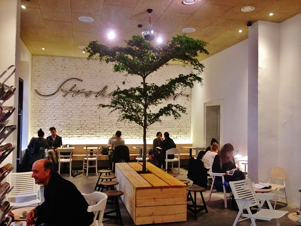 Plants, trees and planters indoor in Hotel, Lobby, Gastronomy, Poland and Europe buy online
