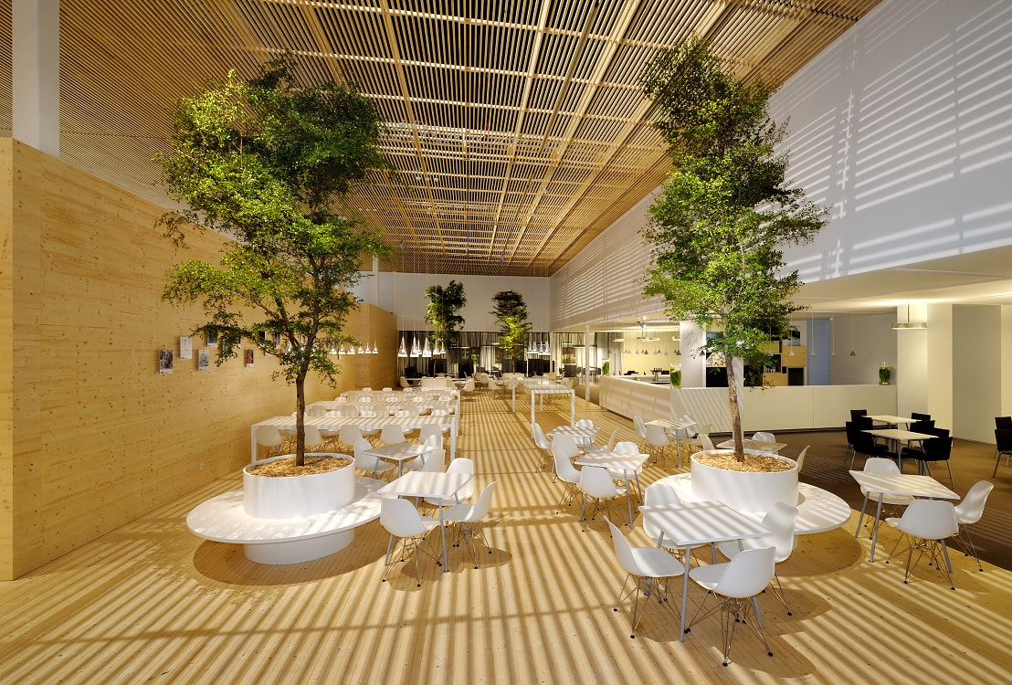 Plants, trees and planters in Hotel, Lobby, Gastronomy, Germany and Europe buy online