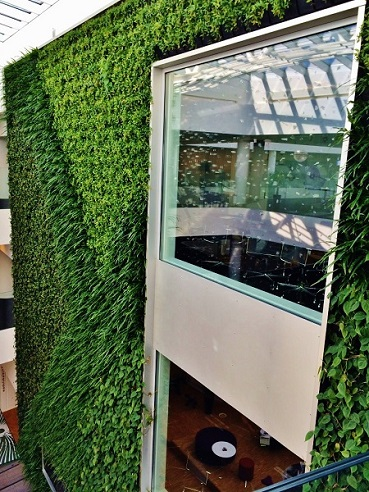 plant wall greenwall interior design planning build building