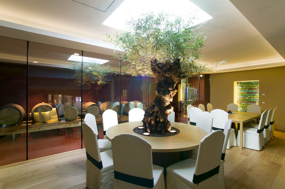 Plants, trees and planters indoor in Hotel, Lobby, Gastronomy, Italy and Europe buy online