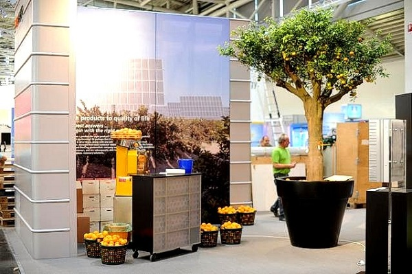 Buy plants and trees for exhibitions and fairs