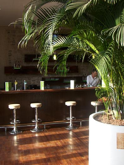 Plants, trees and planters indoor in Hotel, Lobby, Gastronomy, Luxembourg and Europe buy online
